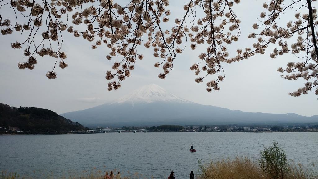 Fuji_03