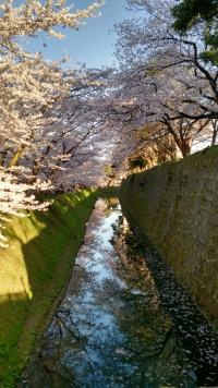 Kanazawa_06