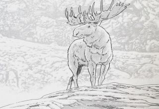 Der alte Mann und der Schnee: Jiro Taniguchis WANDERER IM EIS